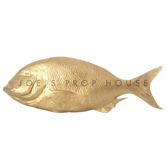 Gold Fish L15in