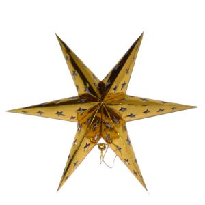 Hanging Paper Star