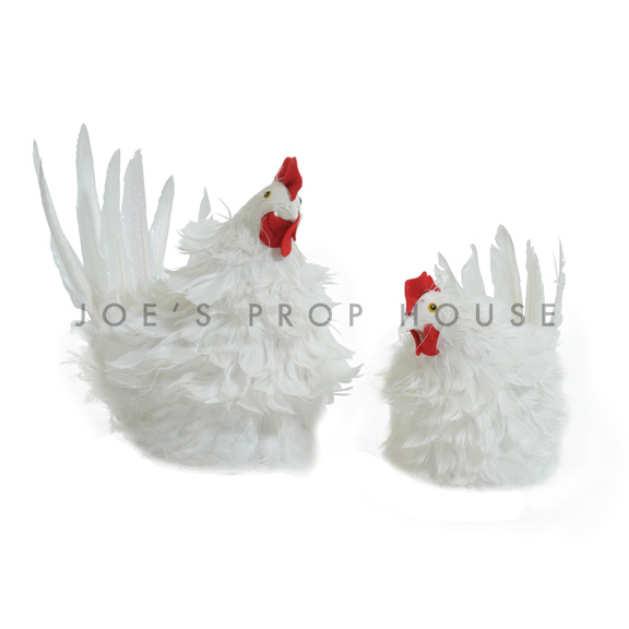 White Chickens