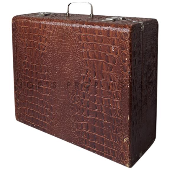 Windham Croc Hardshell Luggage Brown