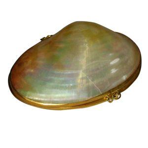 Shell Coin Purse