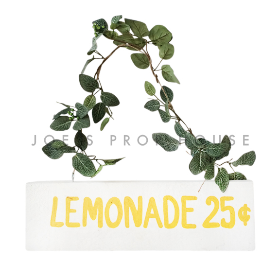 Lemonade Stand Sign 25 Cents