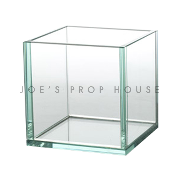 Joelle Clear Tempered Glass Square Container Cube H5in